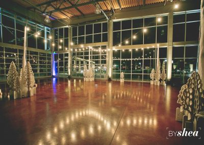Wedding Reception Dance Floor Lighting